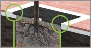 tree grate